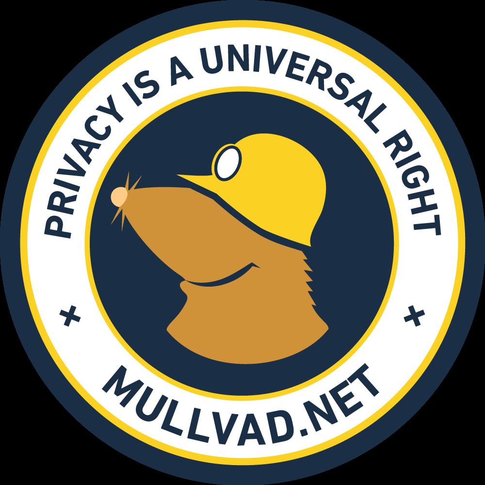 Mullvad am.i.mullvad.net IP DNS Leak Port Checker